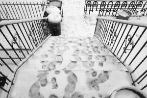Carroll Street Stoop, Snow