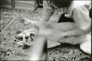 Steve Rubbing Honey - MOMA